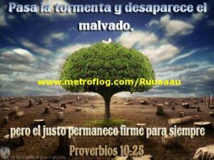 proverbios 10 25