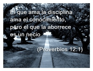 proverbios 12 1