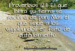 proverbios 12 11