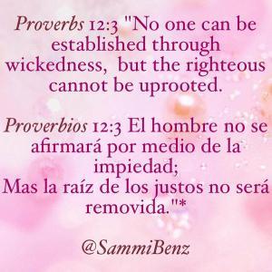 proverbios 12 3