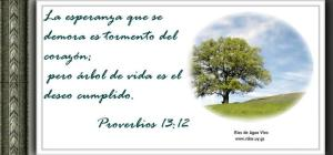 proverbios 13 12