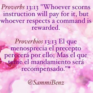 proverbios 13 13