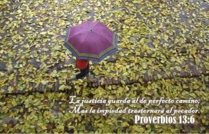 proverbios 13 6