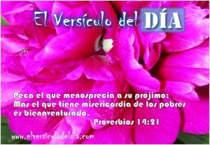 proverbios 14 21