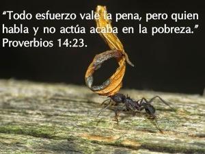 proverbios 14 23