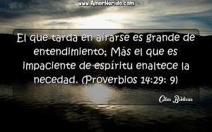 proverbios 14 29