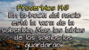 proverbios 14 3