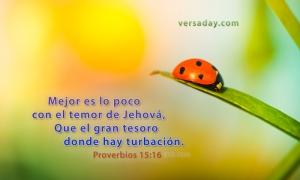 proverbios 15 16