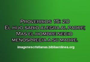 proverbios 15 20