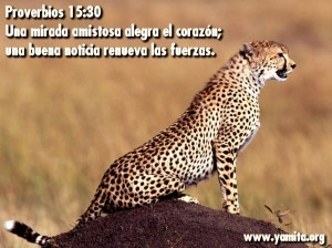 proverbios 15 30