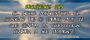 proverbios 15 5
