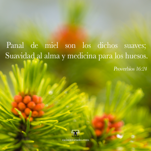 proverbios 16 24