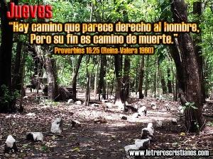 proverbios 16 25