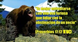 proverbios 17 12