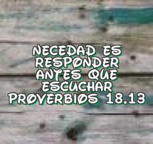 proverbios 18 13