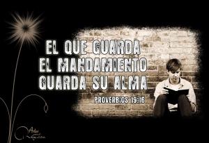 proverbios 19 16