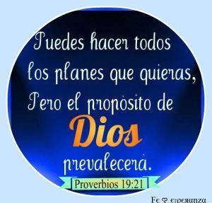 proverbios 19 21