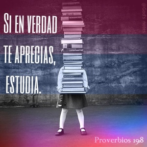 proverbios 19 8