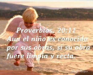 proverbios 20 11