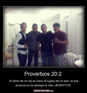 proverbios 20 2