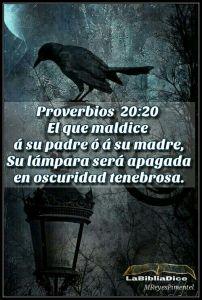 proverbios 20 20