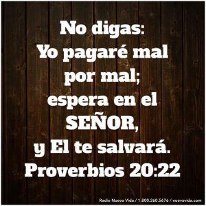 proverbios 20 22
