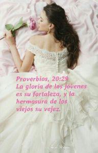 proverbios 20 29