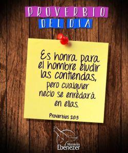 proverbios 20 3