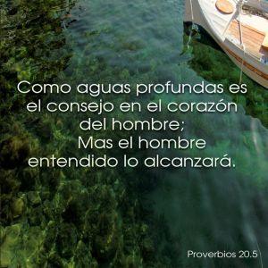 proverbios 20 5