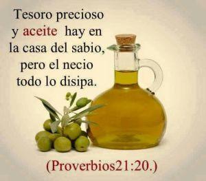proverbios 21 20
