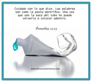 proverbios 21 23