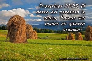 proverbios 21 25