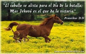 proverbios 21 31