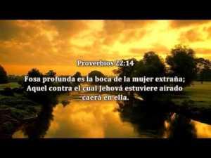 proverbios 22 14