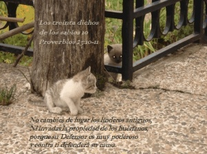 proverbios 23 10-11