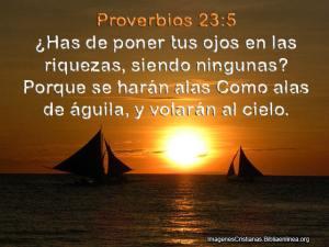 proverbios 23 5