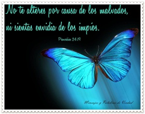 proverbios 24 19a