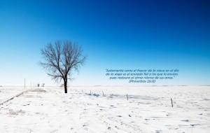 proverbios 25 13