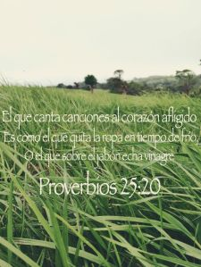 proverbios 25 20