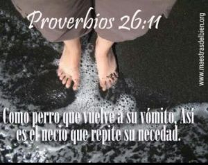 proverbios 26 11