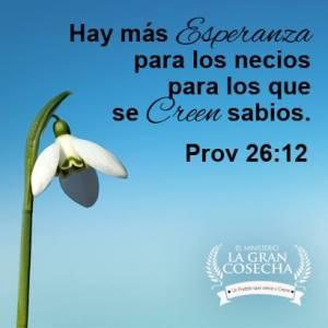 proverbios 26 12