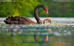 proverbios 26 2a