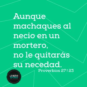 proverbios 27 23