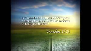proverbios 27 25