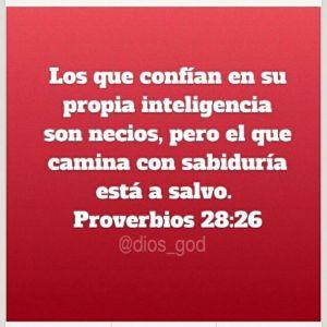 proverbios 28 26