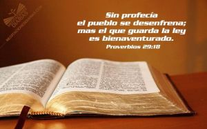 proverbios 29 18