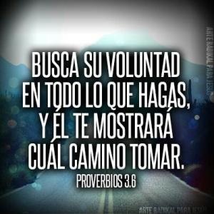 proverbios 3 6