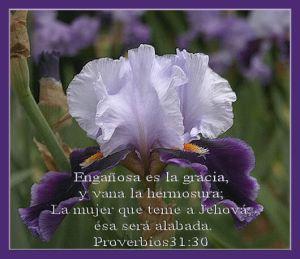 proverbios 31 30