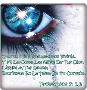 proverbios 7 2