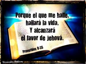 proverbios 8 35
